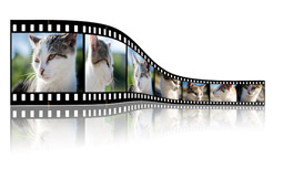 UHD Filme Streaming